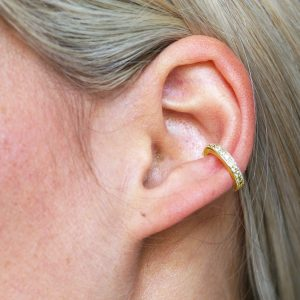 Fake Cartilage Earring